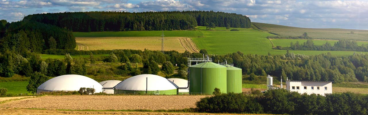 Bioenergiepark Hof/Saale